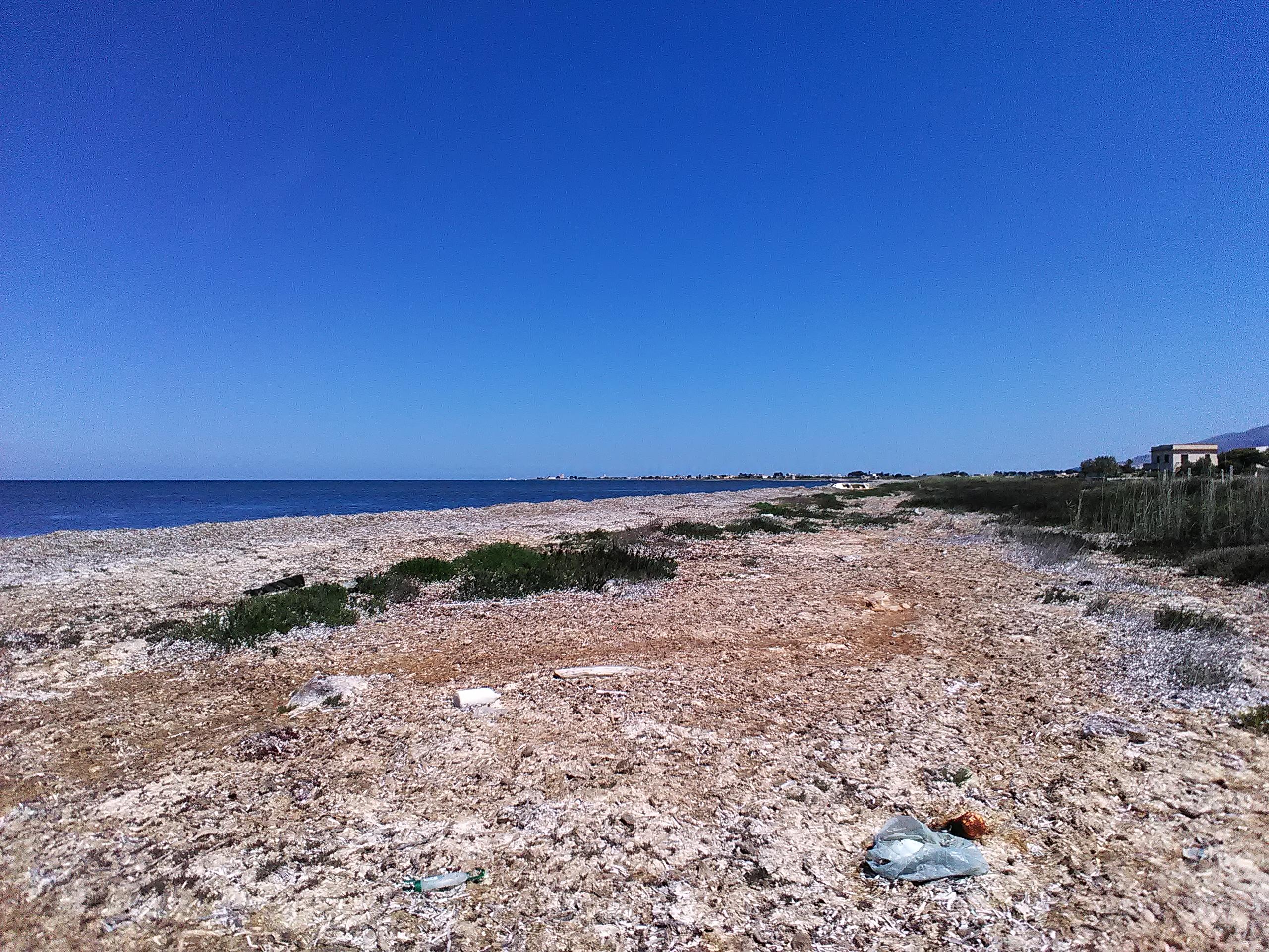 posidonia spiaggiata sulla costa tra Nubia e Salinagrande